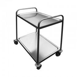 2-level rolling instrument cart